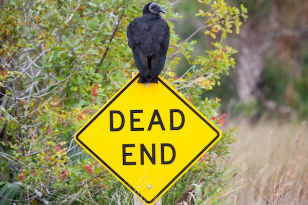 Ravens Season Not at a Dead End…Yet!