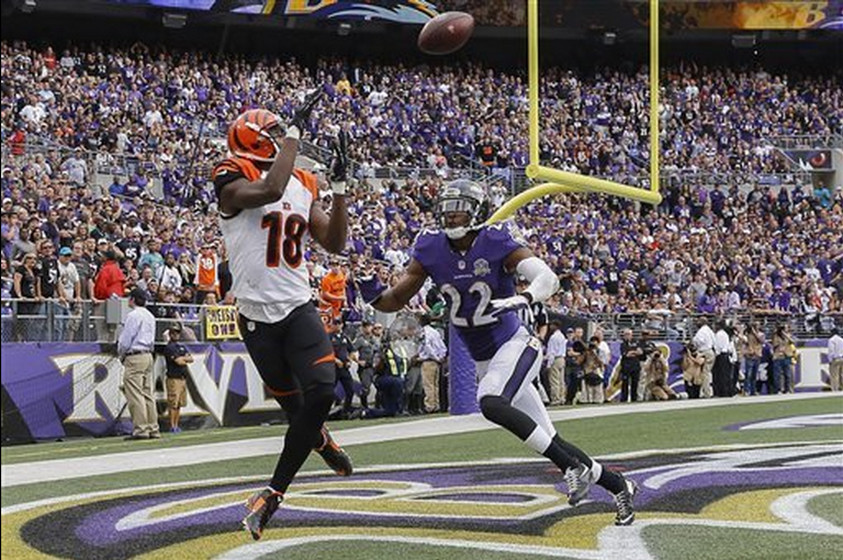 Report Card: Ravens vs. Bengals