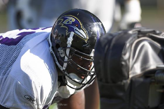 RAVENS ADD TO PRACTICE SQUAD