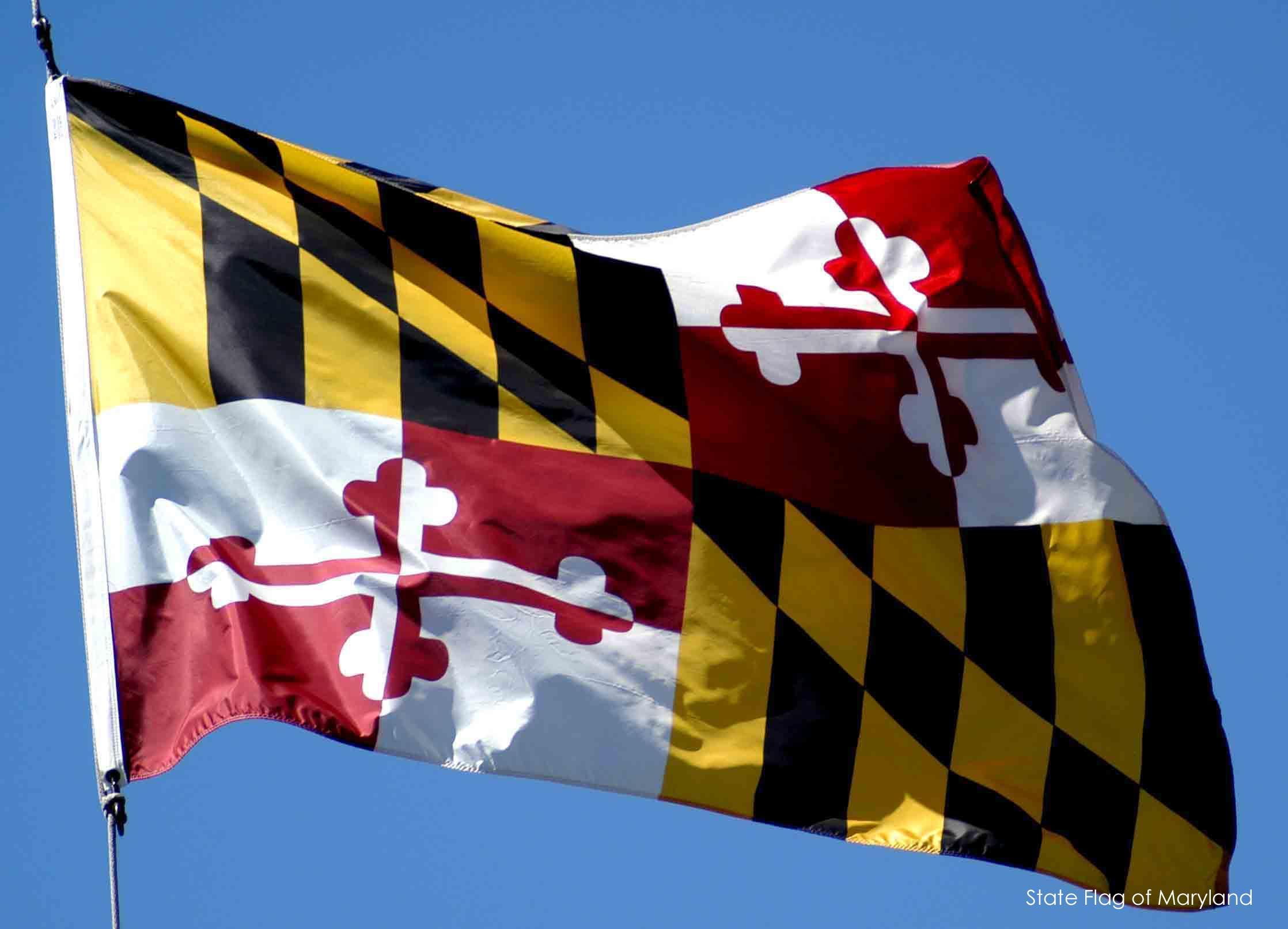 Will Ravens Wear Maryland-Themed Jerseys on TNF?