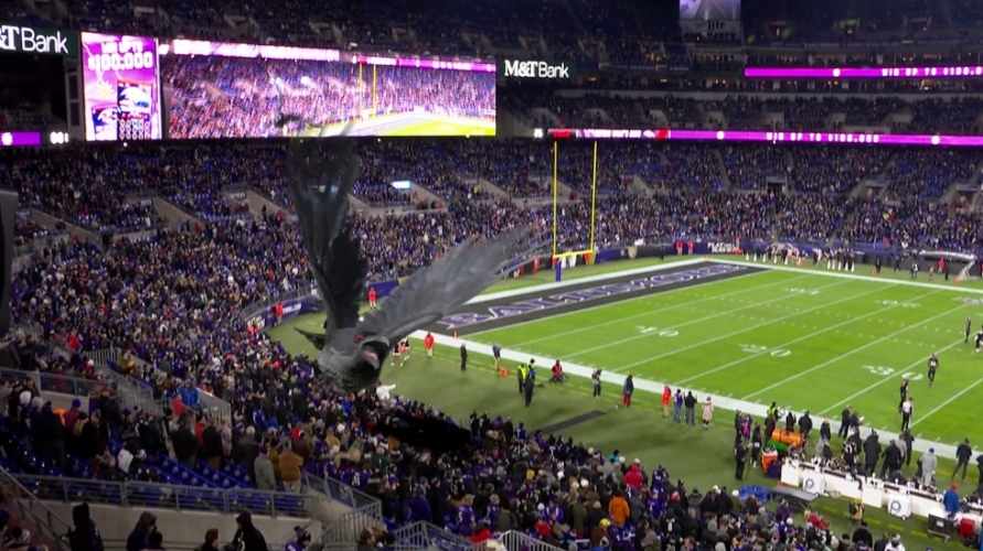 Fans Frustrated by Ravens Decision